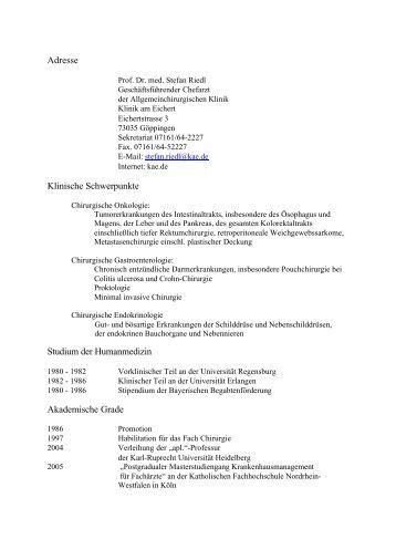 Schön Kunstgeschichte Professor Lebenslauf Ideen - Entry Level ...