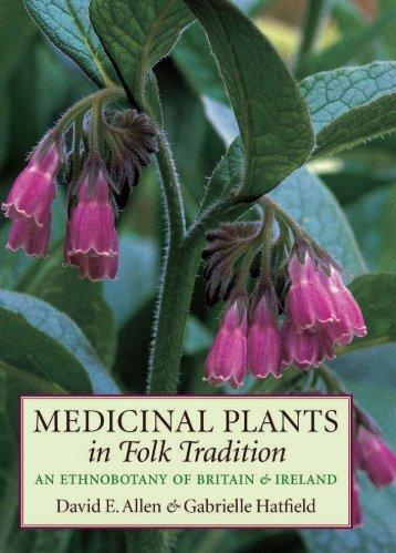 MEDICINAL PLANTS in Folk Tradition - Killerwall.net