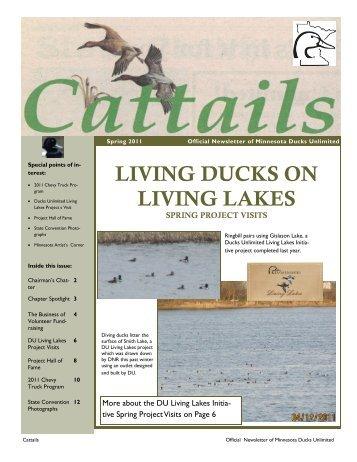LIVING DUCKS ON LIVING LAKES - Ducks Unlimited