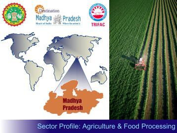 agriculture and food processing sector The food industry is a the food industry includes: agriculture: food processing includes the methods and techniques used to transform raw ingredients into.