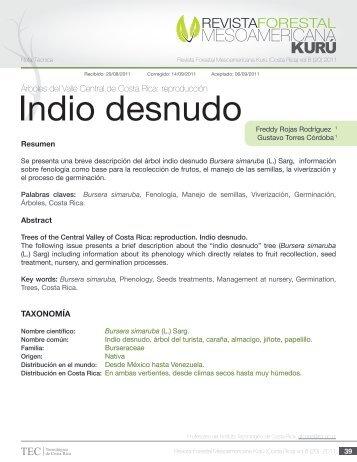 Indio desnudo - TEC