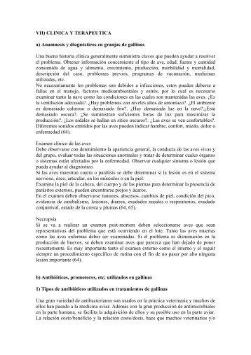 Anamnesis y diagnósticos en granjas de gallinas - UNAM