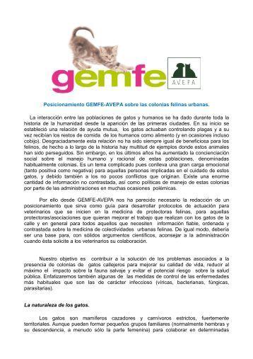 Posicionamiento GEMFE-AVEPA sobre las colonias felinas urbanas ...