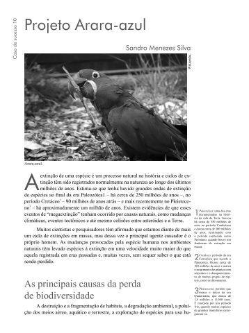 Projeto Arara-azul - Viva Marajó