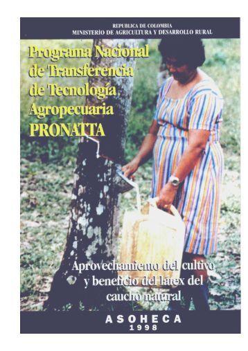 Aprovechamiento cultivo y beneficio latex caucho - Agronet