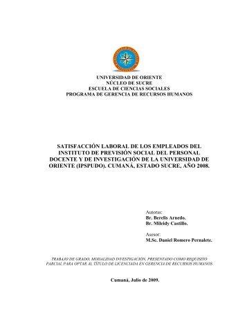 SATISFACCIÓN LABORAL DE LOS EMPLEADOS DEL INSTITUTO ...