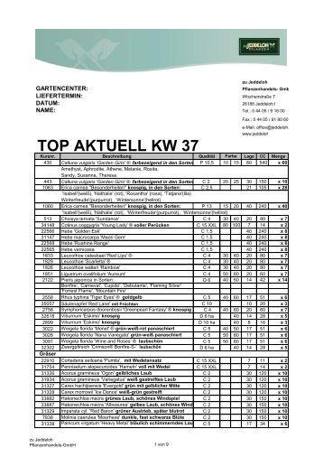 TOP AKTUELL KW 37 - zu Jeddeloh
