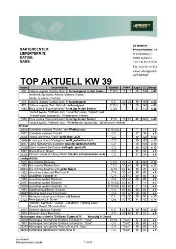 TOP AKTUELL KW 39 - zu Jeddeloh