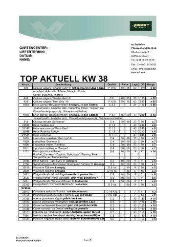 TOP AKTUELL KW 38 - zu Jeddeloh