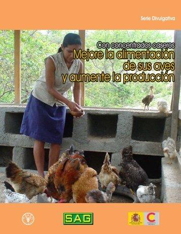 Mejore la alimentación de sus aves y aumente la producción