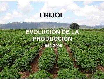 Evolución en la producción de frijol