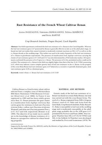 an analysis of french resistance Fighters in the shadows: a new history of the french resistance  and the  whole of france and concludes with an analysis of the role that.