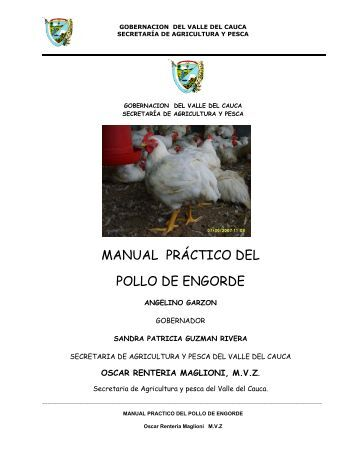 MANUAL PRÁCTICO DEL POLLO DE ENGORDE - EveryOneWeb