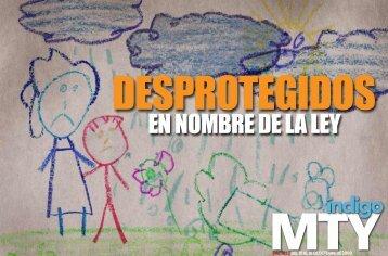 EN NOMBRE DE LA LEY - Reporte Indigo