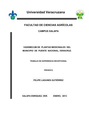 vivero escolar plantas medicinales naturagarzones2011