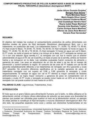 COMPORTAMIENTO PRODUCTIVO DE POLLOS ALIMENTADOS ...