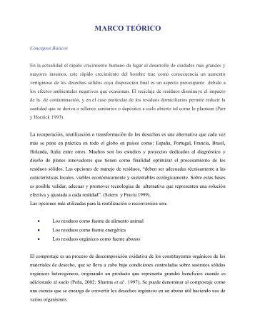 MARCO TEÓRICO - Web del Profesor