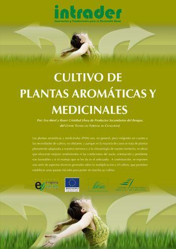 cultivo de plantas aromáticas y medicinales - CTFC