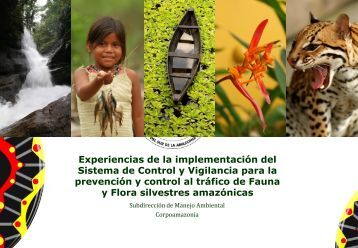 La Amazonia Colombiana - Inicio