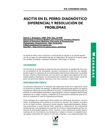 Ascitis en el Perro: Diagnostico Diferencial y Resolución - advance ...
