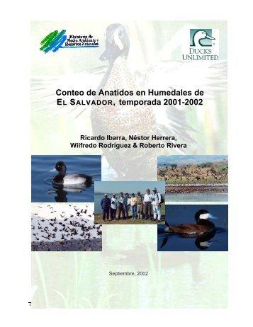 Informe de Conteo de Anatidos 2001-2002 - Ducks Unlimited