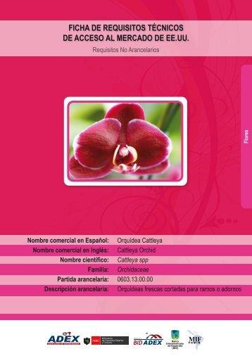 descarga - Cámara de Comercio, Producción y Turismo de San Martín