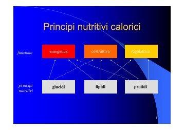 Nutrimenti calorici - Facoltà di Medicina e Chirurgia