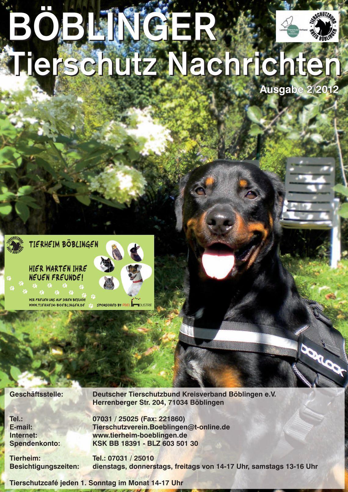 1 free magazines from tierheimboeblingen. Black Bedroom Furniture Sets. Home Design Ideas