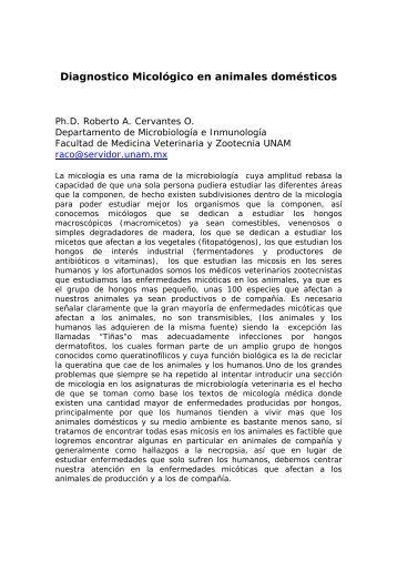 Diagnostico Micológico en animales domésticos - Asociación ...