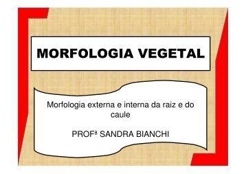 MORFOLOGIA VEGETAL - Colégio Alexander Fleming