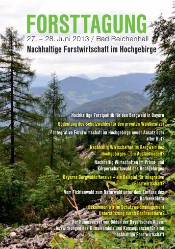 Nachhaltige Forstwirtschaft im Hochgebirge - Forstverein