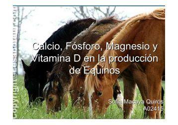 Calcio, Fósforo, Magnesio y Vitamina D en la producción ... - Feednet