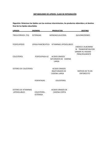 METABOLISMO DE LIPIDOS - quimicabiologicaunsl