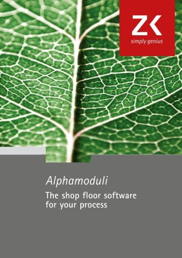 the alpha course manual pdf