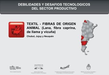 Textil Fibras de origen animal (.pdf) - COFECyT
