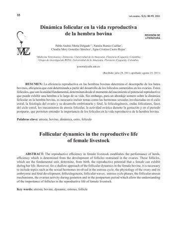 Dinámica folicular en la vida reproductiva de la hembra bovina ...