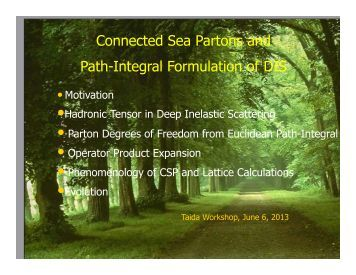 Connected Sea Partons and Path-Integral Formulation of DIS