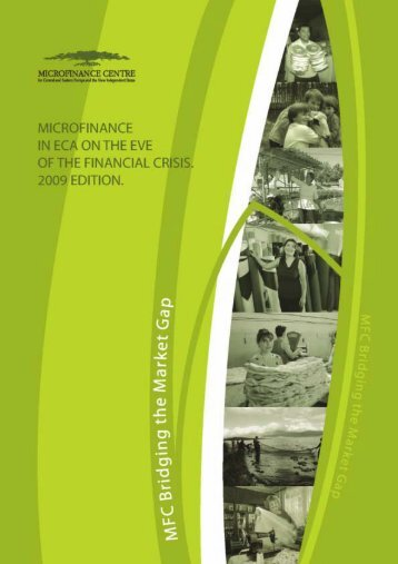 Microfinance industry in Europe and Central Asia