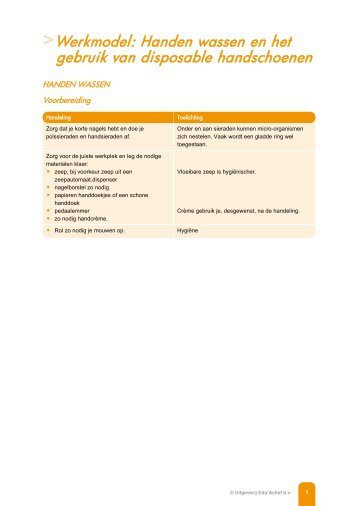 Werkmodel: Aandachtspunten bij het aanleggen van ...