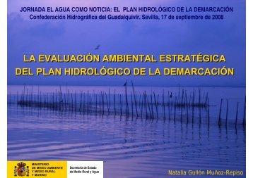la evaluación ambiental estratégica del plan hidrológico de la ...