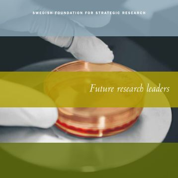 Future research leaders IV