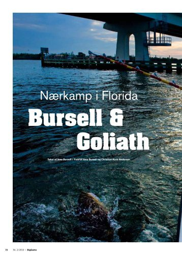 Read article (pdf - 721 KB) - Jens Bursell