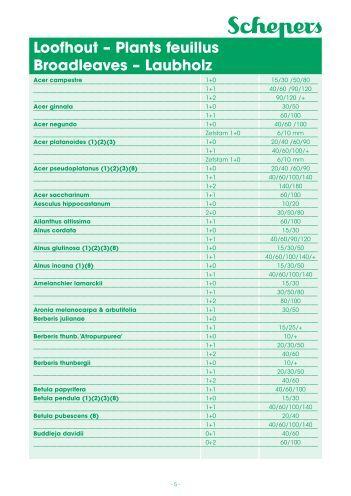 Stocklijst 08-09.indd - Boomkwekerij Schepers