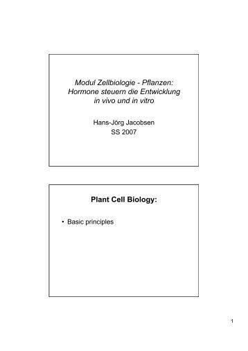 Plant Tropism Worksheet | ABITLIKETHIS