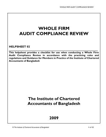 What is Compliance Audit? definition and meaning