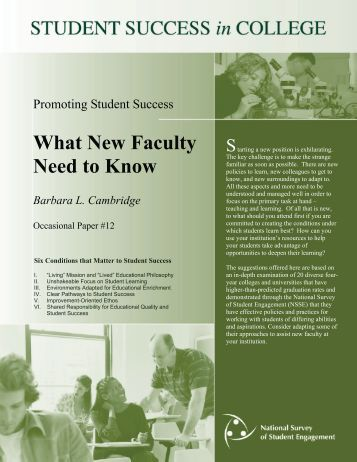 DEEP Practice Brief What New Faculty Need to Know - NSSE