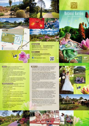 Educational Programs, Workshops and Tours - Wollongong City ...