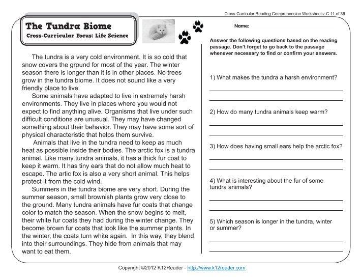 Animal Adaptations Reading Comprehension 5419204 Salonurodyfo