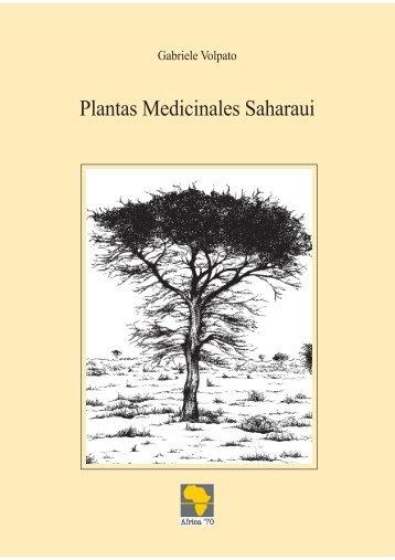 plantas-medicinales-saharauis