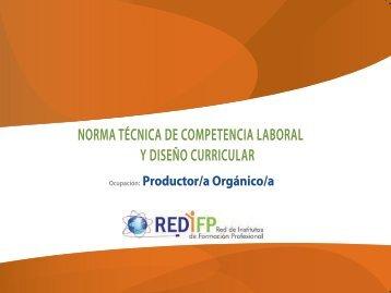 NORMA TÉCNICA DE COMPETENCIA LABORAL Y ... - OIT/Cinterfor